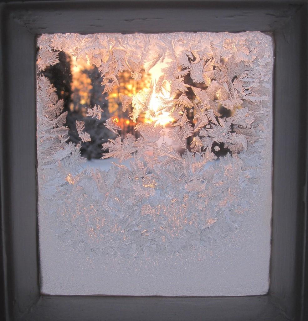 Joulukuu 2010 005
