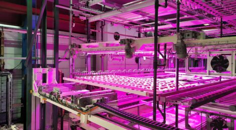 Ilmastonmuutos ja maanviljely - Osa 2, Paluu tulevaisuuteen